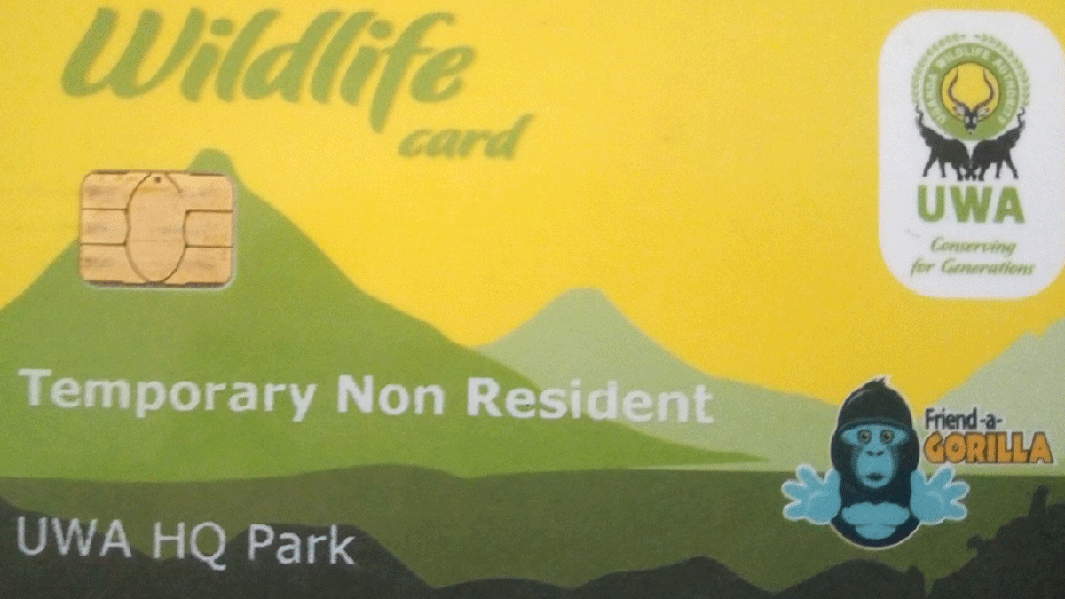Booking for gorilla trekking experience -Booking